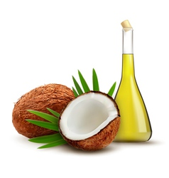 Coconut with oil vector