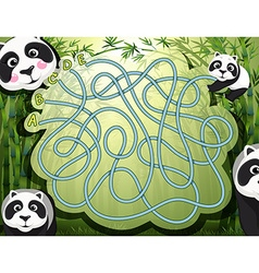 Maze game with panda and bamboo vector image