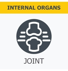 Internal organs - joint vector