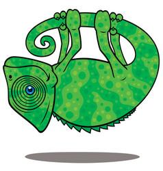 magical chameleon vector image