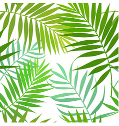 seamless pattern of palm leaves vector image