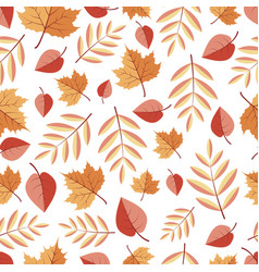 seamless pattern with isolited autumn leaves on a vector image