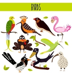 Set of cute cartoon animals birds living in vector