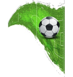 Soccer ball on the football field vector