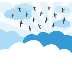 Birds fly on the sky vector image
