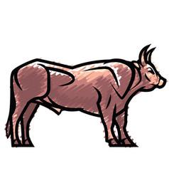 Powerful standing bull vector