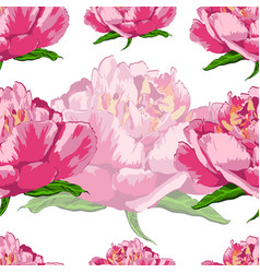seamless pattern of flowers peonies on a white vector image vector image
