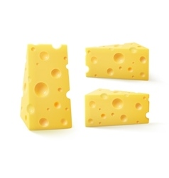 Set of triangular pieces swiss cheese isolated vector