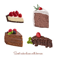 Hand drawn delicious cake slices set vector