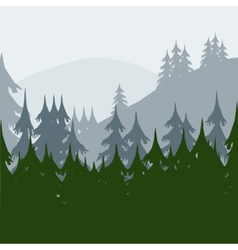 Morning in wood vector