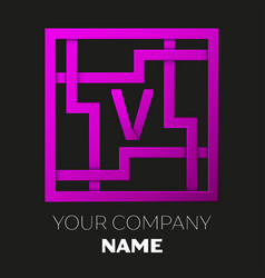 Letter v symbol in colorful square maze vector