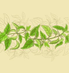 nettle pattern vector image vector image
