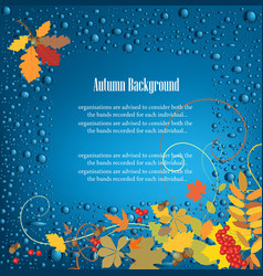 Autumn frame background vector