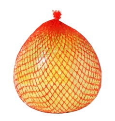 Low poly yellow pomelo wrapped vector