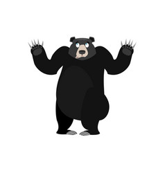 Baribal surprised emoji american black bear vector