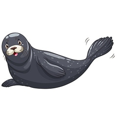 Seal with black skin vector image