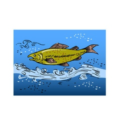 speckled trout swiming underwate vector image vector image