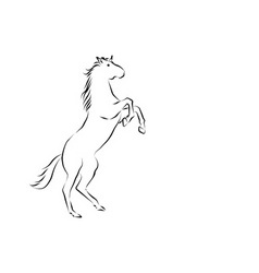 Rearing horse vector