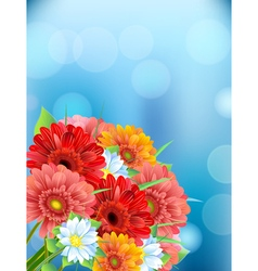 Bouquet of flowers gerber vector image