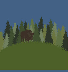 background with forest grass and bison vector image