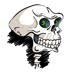 Cartoon image of ancient skull vector