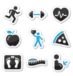 Health and fitness labels vector
