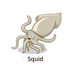 Squid underwater animal cartoon vector