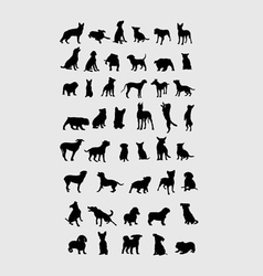 Dog collection silhouettes vector