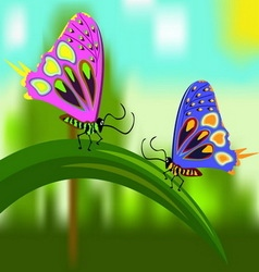 Butterflies on a blade of grass vector