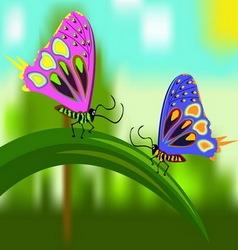 Butterflies on a blade of grass vector image