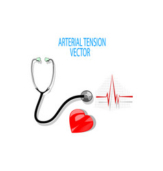 ecgstethoscope and heart vector image vector image