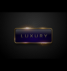luxury blue label with golden frame sparks on vector image vector image