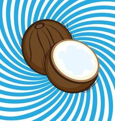 ripe coconut vector image