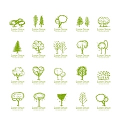 Trees collection sketch for your design vector image