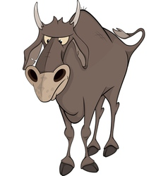 Bull Cartoon vector image