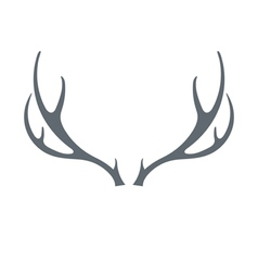 Deers horns icon vector
