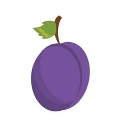 drawing plum organic fruit vector image vector image