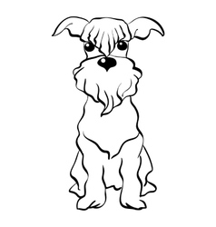 Sketch miniature schnauzer dog sitting vector