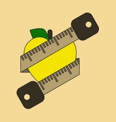 Flat icon on stylish background logo diet vector