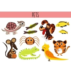 Set of cute cartoon animals and birds pets turtle vector