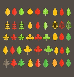 Different leaf collection vector image