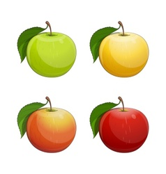 Ripe apple with green leaf vector