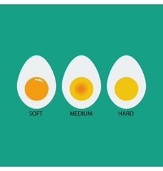 Boiled eggs vector