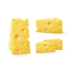 Set of triangular pieces cheese on background vector