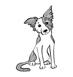 Sketch funny border collie dog sitting vector