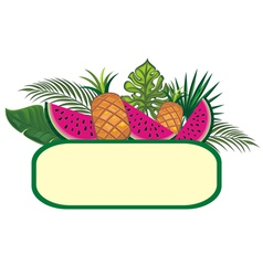 Exotic fruits vector image vector image