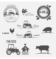 Fresh Farm Produce vector image
