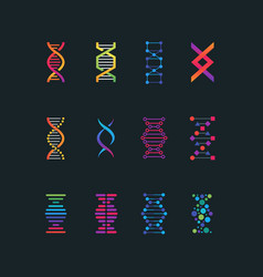 human dna research technology symbols spiral vector image
