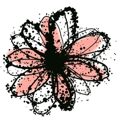 with daisy flower vector image vector image