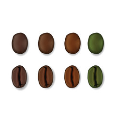 realistic set of coffee beans isolated on white vector image vector image